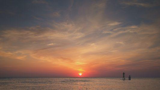 ACTIVITE : Cannes, le soleil et la mer